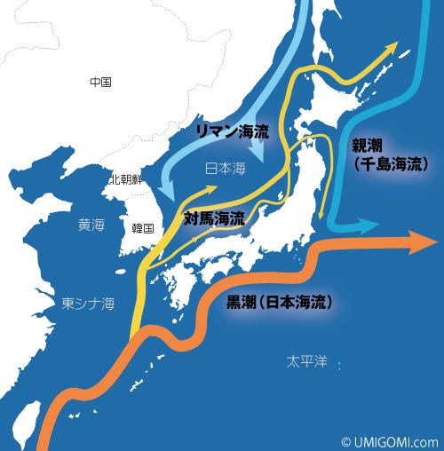 周り 日本 の 海流 の